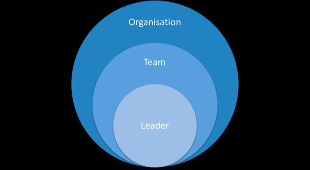 Leadership Space scope - organisation, teams, individuals