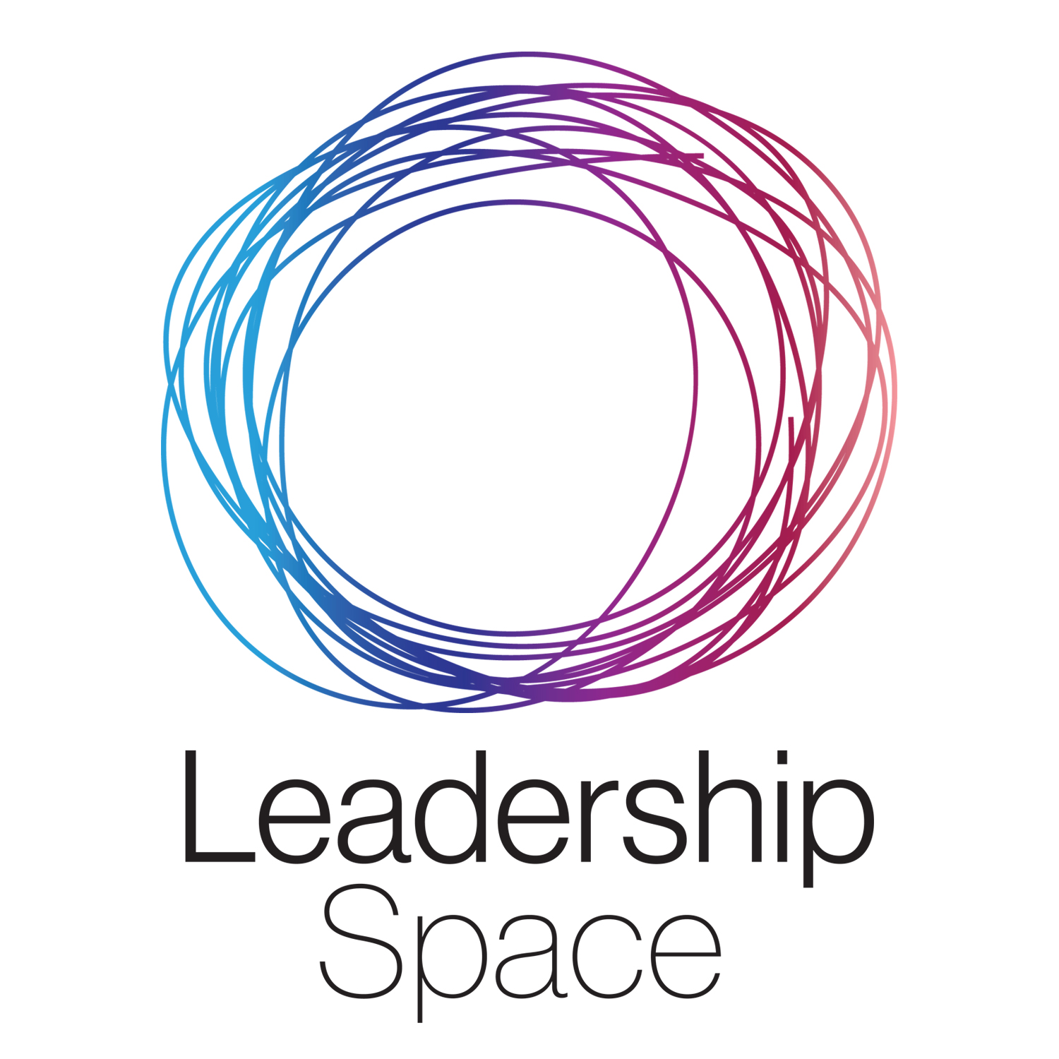 Leadership Space - conversations with visionary social purpose leaders